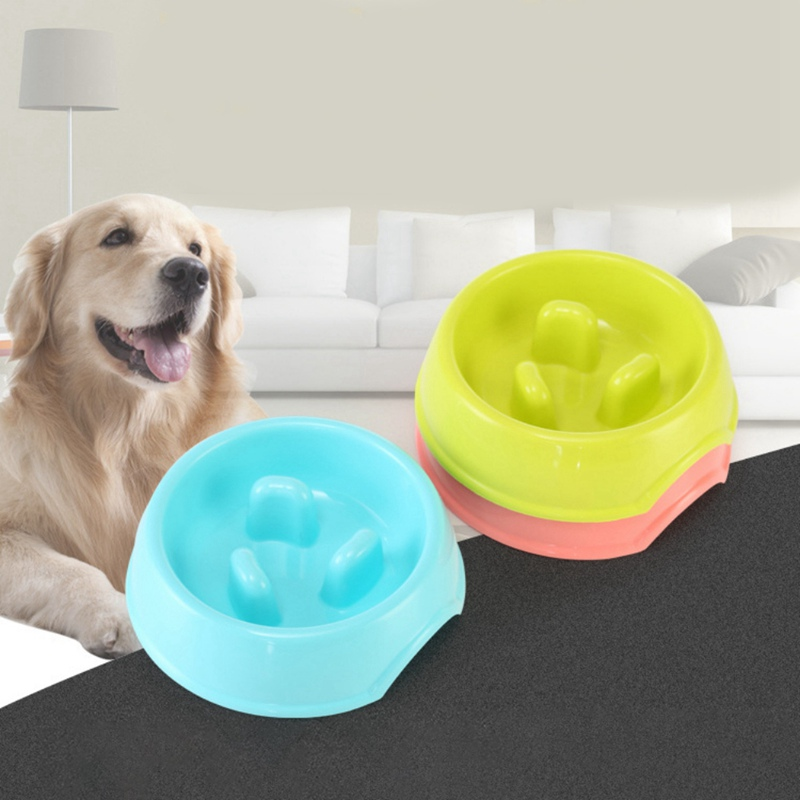 Pet Food Bowl For Puppy Small Dogs Anti Choking Maze Non-slip Slowly Feeding Bowl