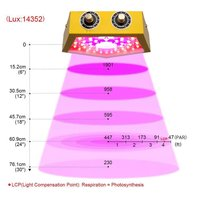 Plants LED Grow Light Full Spectrum 1000W Double Chip Red/Blue/UV/IR Pentagon Light For Indoor Plants VEG BLOOM
