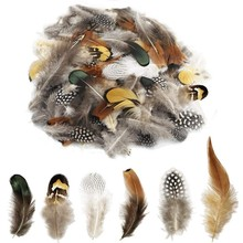 24Pcs Multiple Styles Natural Peacock Pheasant Feathers for Crafts Jewelry Making Accessories Decoration Plumes 5-15CM Wholesale