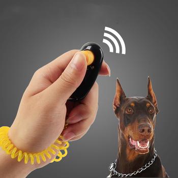 1 sztuka zwierzęta kot szkolenia psów Clicker regulowany pasek na nadgarstek kot pies plastikowe kliknij trener pomoc do dźwięku klucz łańcucha Clicker tanie i dobre opinie Szkolenia Clickers CCY139 Z tworzywa sztucznego