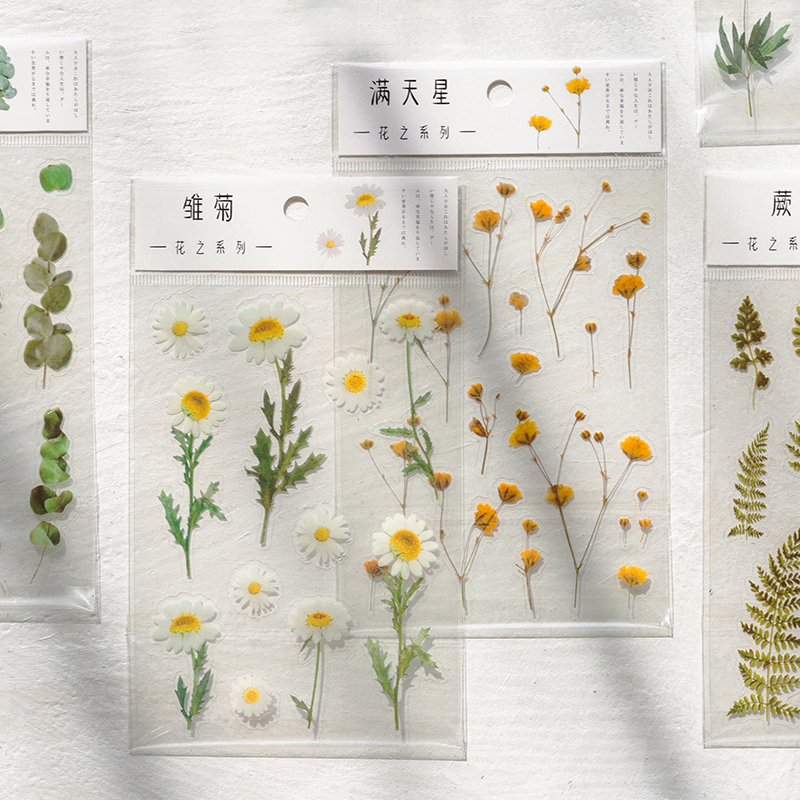 12 Designs Natural Daisy Clover Japanese Words Stickers Transparent PET Material Flowers Leaves Plan