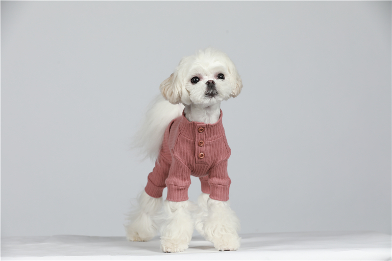 small puppy jumpsuit four legs (30)