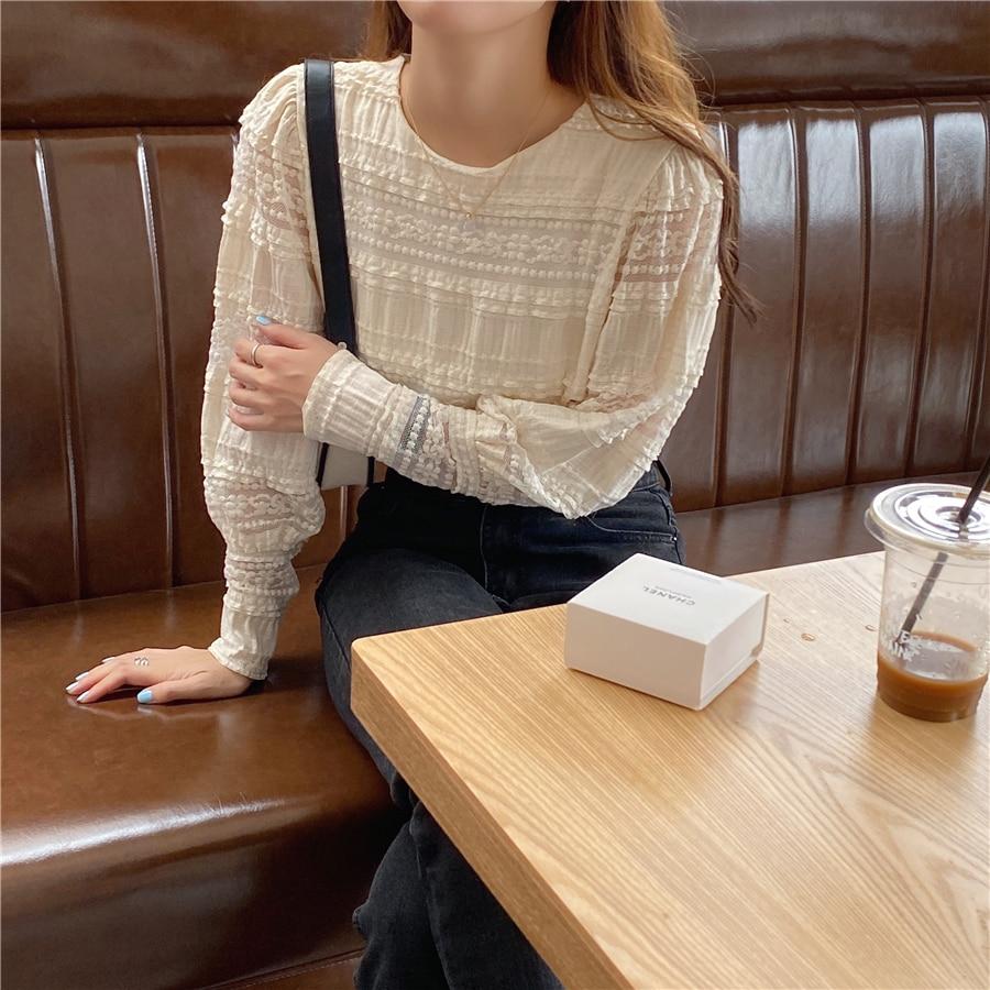 H4c4261e6ddc443689e6f7093dab258fdu - Spring / Autumn Korean O-Neck Long Sleeves Solid Lace Blouse
