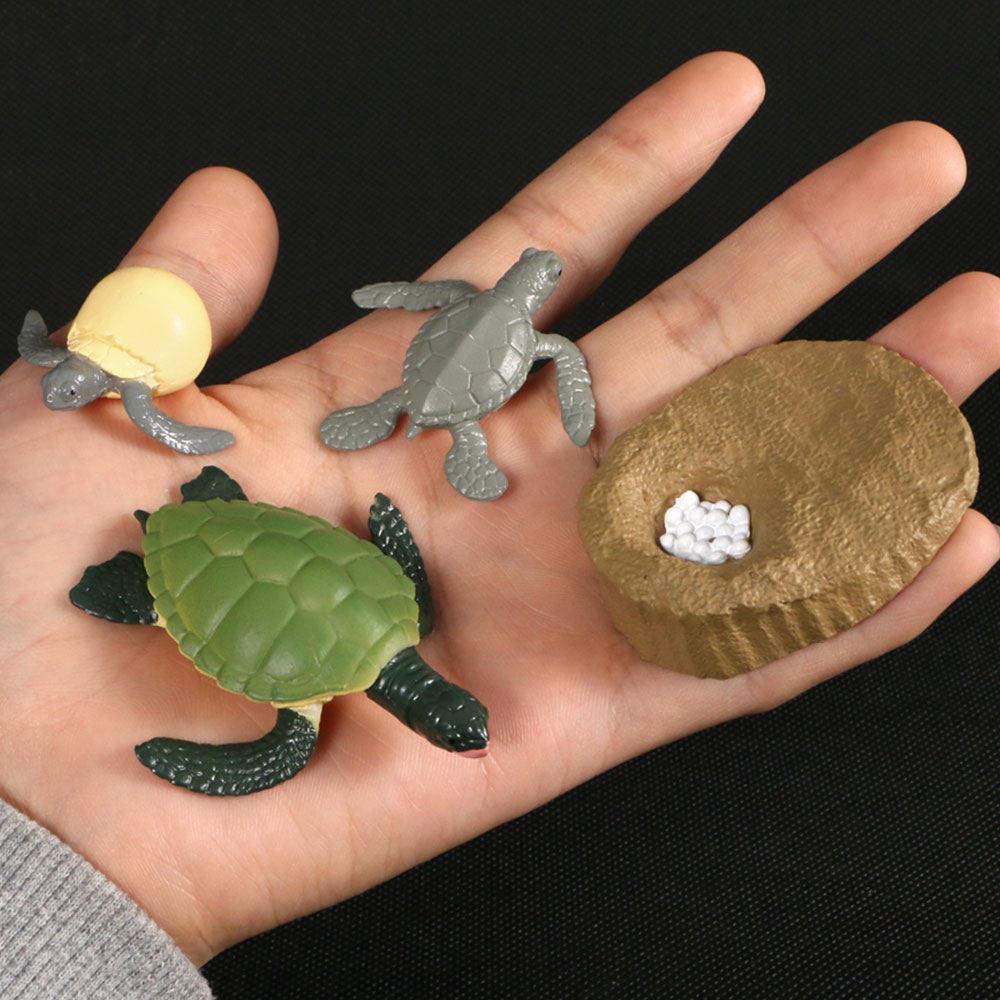 Animals Growth Cycle Life Cycle Model Set Ant Mosquito Sea Turtle Simulation Model Action Figures Teaching Toys For Kids image