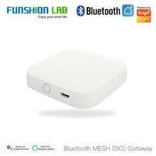 FUNSHION Tuya Bluetooth Gateway Hub Smart SIG Mesh WiFi Smart Life APP Remote Control Work with Alexa Google Home