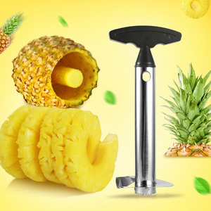 Stainless Steel Easy to use Pineapple Peeler Accessories Pineapple Slicers Fruit Knife Cutter Corer Slicer Kitchen Tool dropship