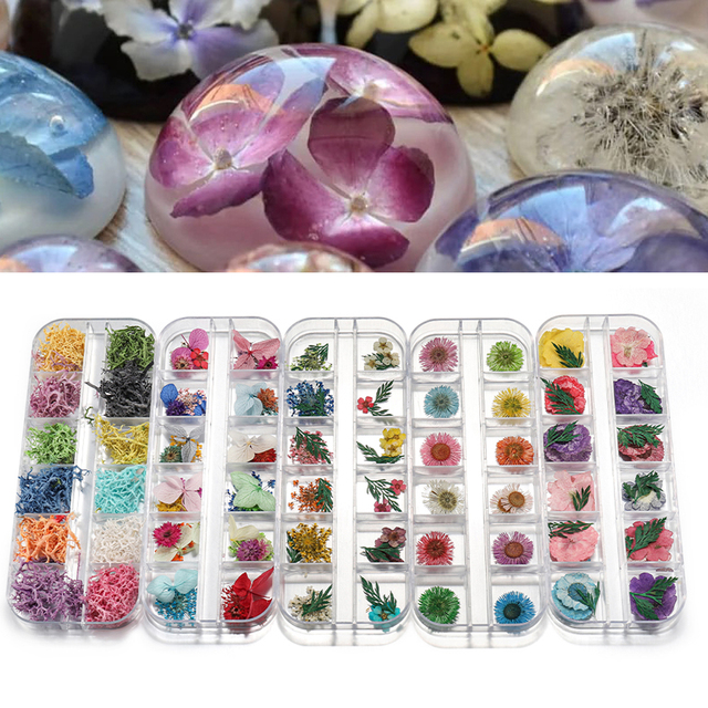 1Box Ammi Majus Real Dried Flower Dry Plants For Epoxy Resin Pendant Jewelry Making Craft DIY Accessories Nail Art Decals Candle