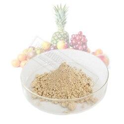 Enzyme saccharifiante, enzyme de conversion spécifique à la fusion, hydrolase de glucose comestible, enzyme de saccharification