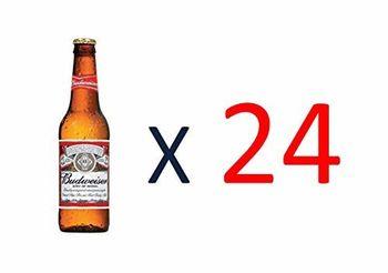 Bier Budweiser 24x25cl