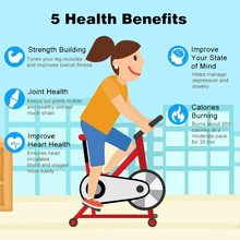 Ultra-Quiet Indoor Spinning Bike Exercise Bicycle Sports Fitness Equipment Black & White Home Gym Trainer Bicicleta Estatica