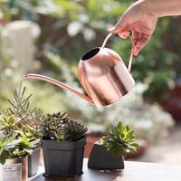 Neue 500ML Edelstahl Lange Auslauf Home Garten Bonsai Pflanze Blume Gießkanne-in Gießkannen aus Heim und Garten bei