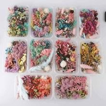1 коробка, настоящие сухие цветы, сухие растения для ароматерапии, Свеча из эпоксидной смолы, подвеска, ожерелье, изготовление украшений, ремесло, аксессуары для творчества