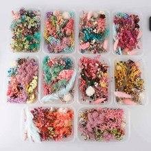 Caja de flores secas reales para aromaterapia, vela de resina epoxi, colgante, collar, joyería, artesanía, accesorios, 1 caja