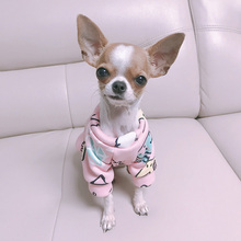Colorful cartoon-Animals Chihuahua hoodie