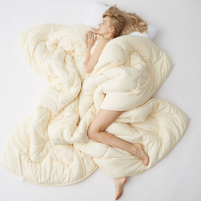 Cheap High Quality Winter quilt comforter blanket duvet filling cotton cover twin single queen supper king size 2-4KG