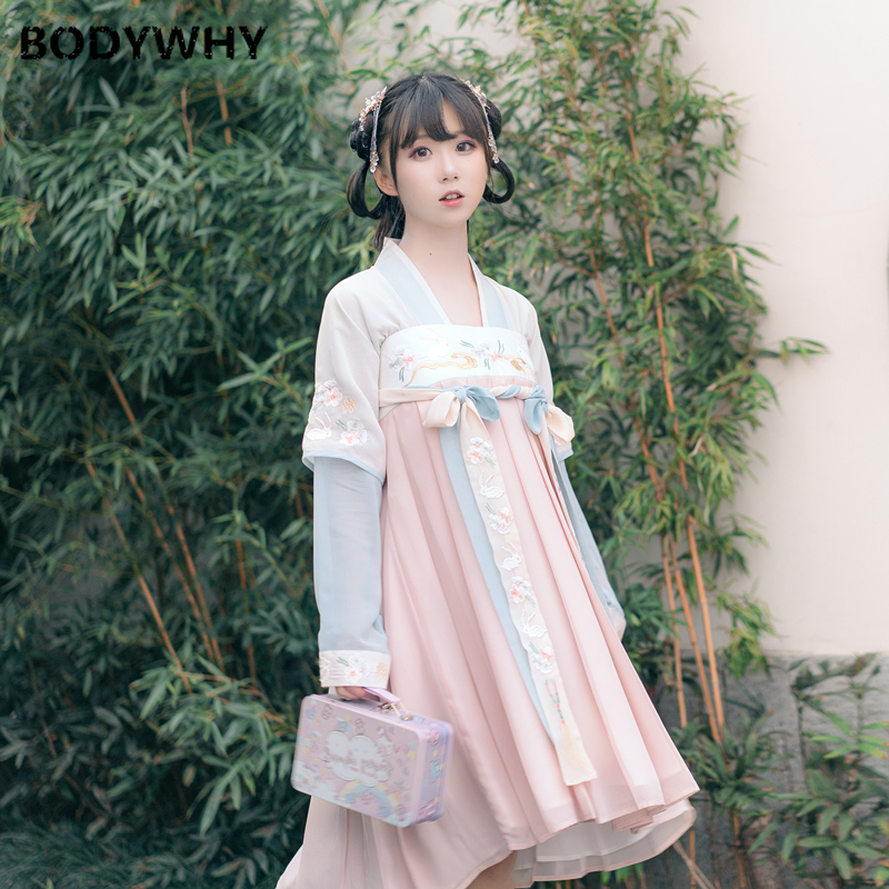 New Temperament Dress Hanfu Female Chinese Style Embroidery Chest Skirt Costume Fresh And Elegant Princess Clothing Women