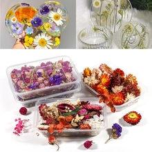 1 Box suszony kwiat roślin epoksydowych formy żywiczne kwiaty silikonowe żywicy epoksydowej UV formy Nail Art dla DIY elementy do wyrobu biżuterii