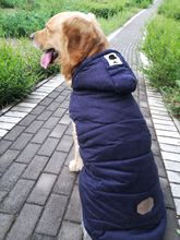 Big Dog Clothes Medium and Large Dog Vest Pet Samoye Cotton Padded Clothes Thickened Big Dog Autumn and Winter Clothes Moustache