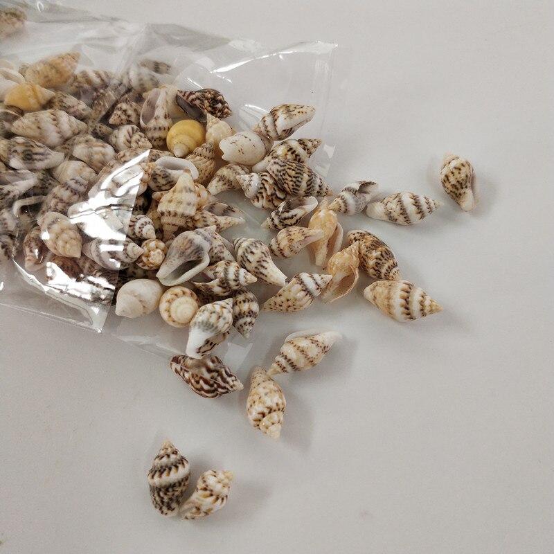 50PCS  Size:0.9-1.2cm Natural Conch Shells Aquarium Decoration Home Decor Natural Sea Beach Shell Conch Seashells For DIY Crafts