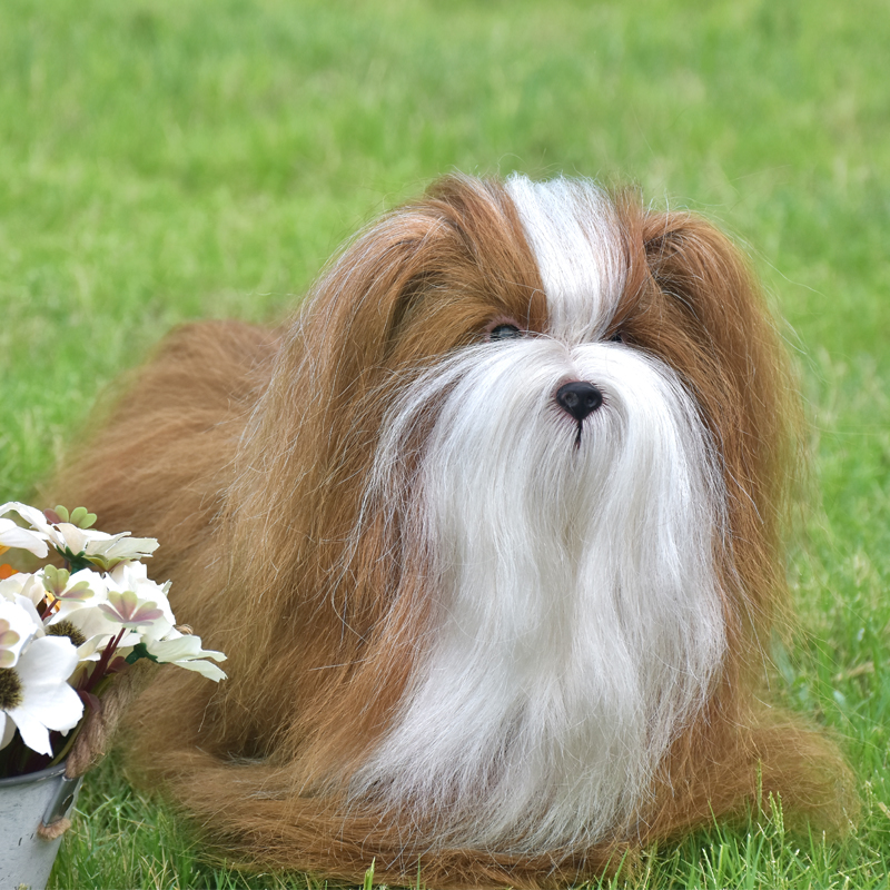 Mannequin Dog With Real Animal Hair For Practice Bath Dye Cut Blow Bleach Training Realistic Dog ModeL Mannequins As Gift