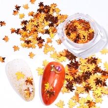 LEMOOC 1 Box Holo Nagel Flakies Pailletten Rose Gold Pulver Paillette DIY Nagel Kunst Dekoration