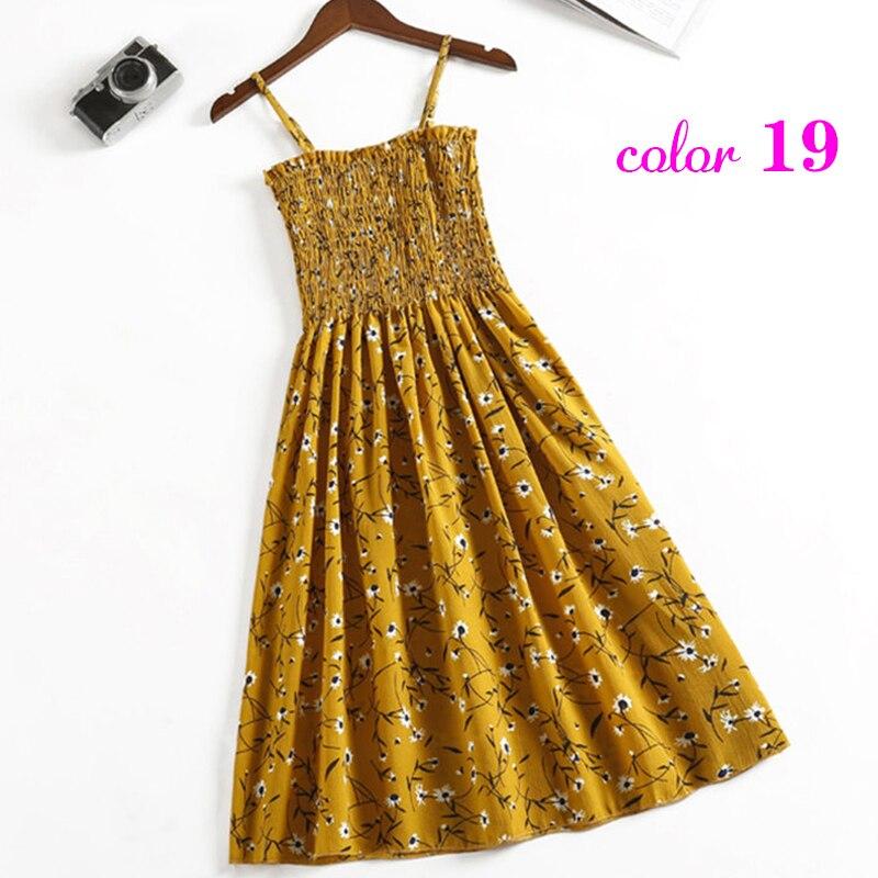 19-黄色海草