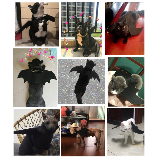 Cat Dogs Costumes Bat Wings Party Supplies Household Small Fashion Artificial Wing Animal Cats Accessories for Pets 3
