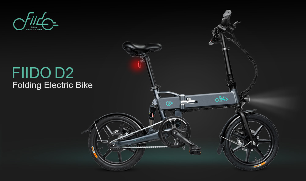 FIIDO D2 Electric Folding Bicycle - Hybrid Assist Electric Bike