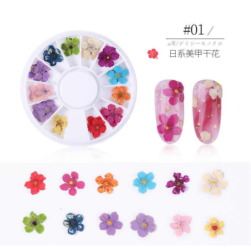 1 kutu 3D kurutulmuş çiçek tırnak dekorasyon doğal çiçek etiket karışık kuru çiçek DIY tırnak sanat çıkartmaları takı UV jel lehçe manikür