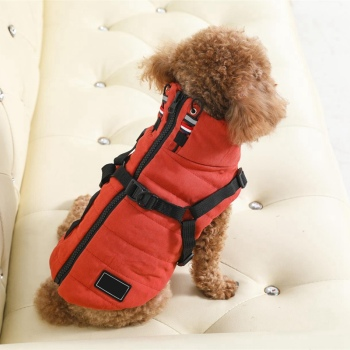 Winter Harness Jacket For Small Dogs  2
