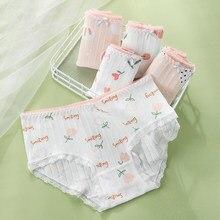 5 Pçs/set Mulheres Calcinha de Algodão Macio Moda Conforto Underwear Cintura Baixa Meninas M-XXL Respirável Cuecas Senhoras Lingerie Sem Costura