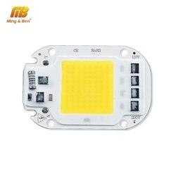 Светодиодный чип COB 20 Вт 30 Вт 50 Вт AC 110 В 220 В Smart IC светодиодный Бисер для DIY светодиодный прожектор лампа дневной белый холодный белый теплый б...