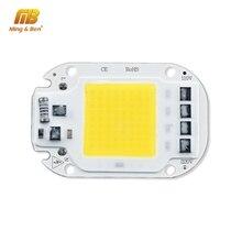 Contas de led inteligente com lâmpada cob, chip de led 20w 30w 50w ac 110v 220v ic lâmpada de fluxo led diy para dia, branco quente e frio