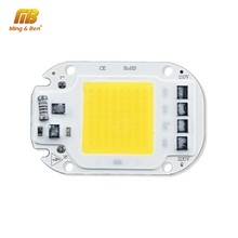 LED COB หลอดไฟ 20W 30W 50W AC 110V 220V สมาร์ท IC LED ลูกปัด DIY LED Grow หลอดไฟ Floodlight สีขาวเย็นสีขาวอุ่นสีขาว