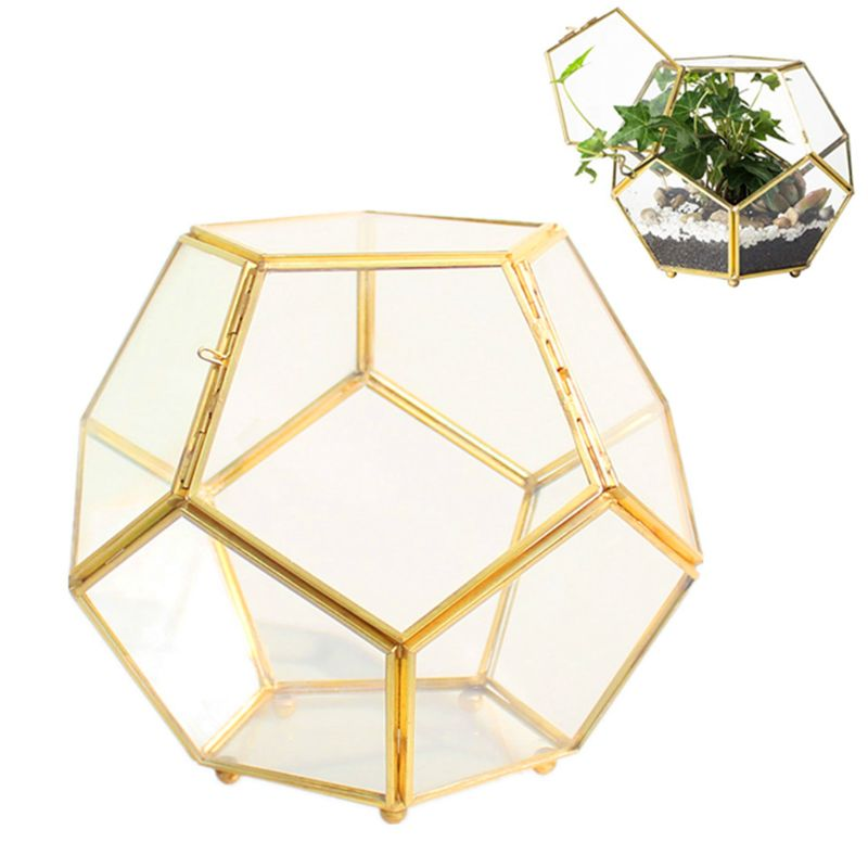 Close Footed Gold Copper Storage Box Brass Glass Glass Terrarium Geometric Terrarium With Door Pentagon Ball Shape Close Fern