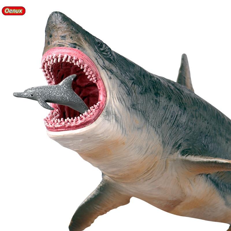 巨齿鲨(1)