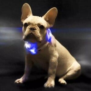 Image 4 - Youpin Pet Licht Kragen Wasserdichte xl81 5001 Anti verloren Tag LED Warnung Beleuchtung USB Lade Kragen für Hund
