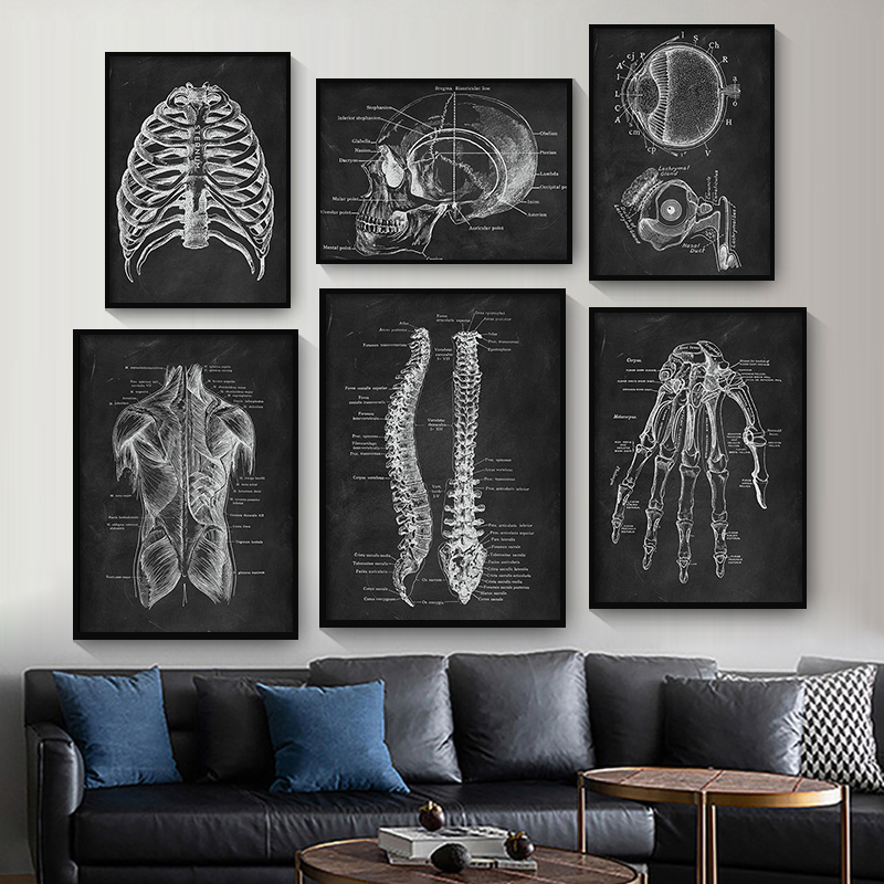 Human Anatomy Artwork Medical Clinic Wall Picture Skeleton Organ Muscle System Vintage Canvas Print Body Education Poster 1