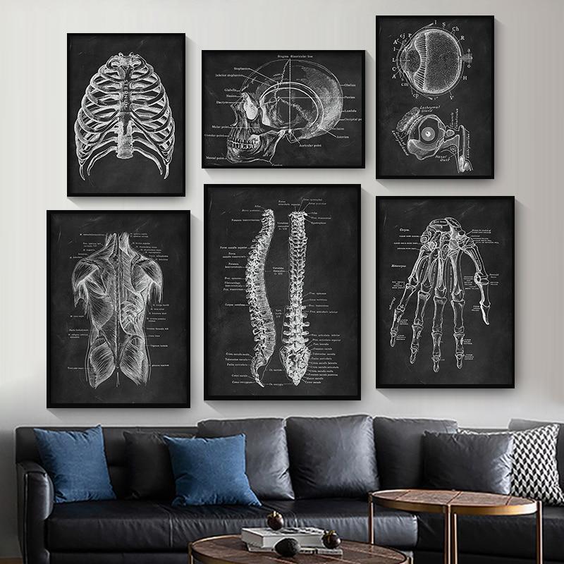 Настенная картина для медицинской клиники, художественное пособие по анатомии человека, скелет, органная Мышечная система, винтажная холщовая печать, плакат для обучения телу