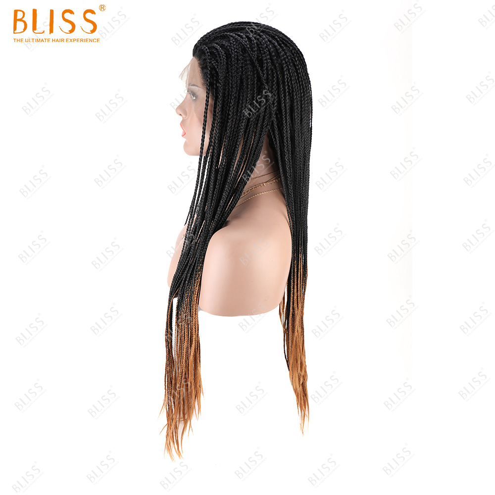 BLISS Micro Braiding Synthetic Hair Lace Front Wigs Ombre Braid Dark And Blonde Colorful Wigs For Black Women Wholesale
