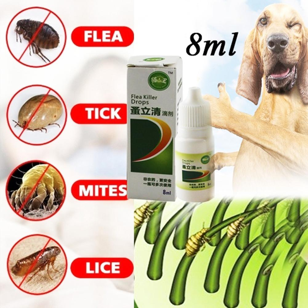 New 8ml Liquid Pet Dog Catss Insect Killer Spray Pet Dog Cats Anti-flea Drop Insecticide Flea Lice Insect Killer
