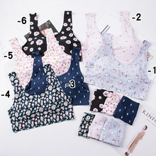 Women Seamless Bra Set Sexy Push Up Padded Lace Bras and Panties Set Fashion Floral Lingerie Female Underwear Set sexy bra set women lace underwear sexy female panties push up padded bras sexy brief set