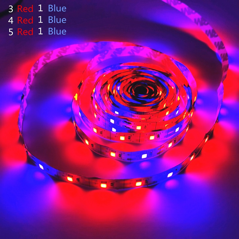 LED Grow Light Full Spectrum USB Grow Light Strip 0.5m 1m 2m 3m 2835 Chip LED Phyto Lamp Plants Flowers Greenhouse Hydroponic