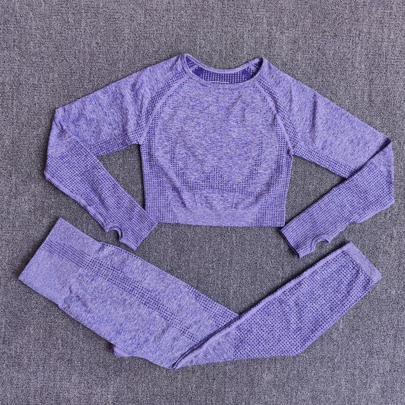 ShirtsPantsPurple - Women Seamless Yoga Set Fitness Sports Suits
