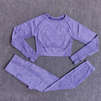 ShirtsPantsPurple - Women Seamless Yoga Set Fitness Sports Suits
