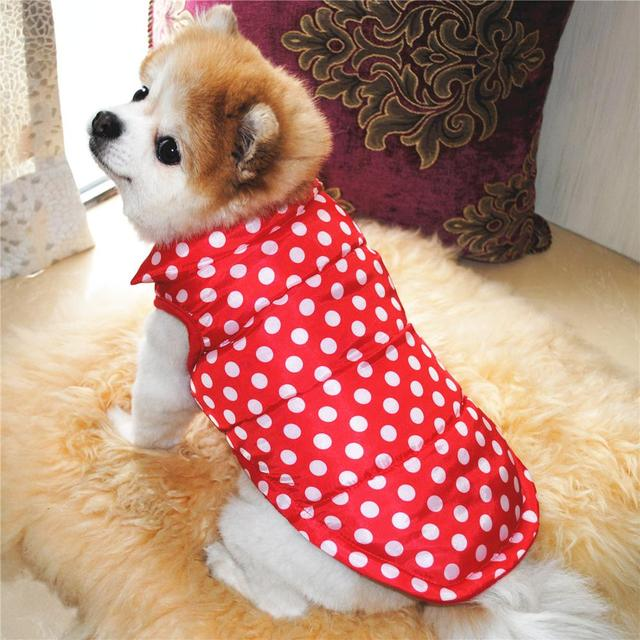 Clothing Winter Dogs Coat  My Pet World Store