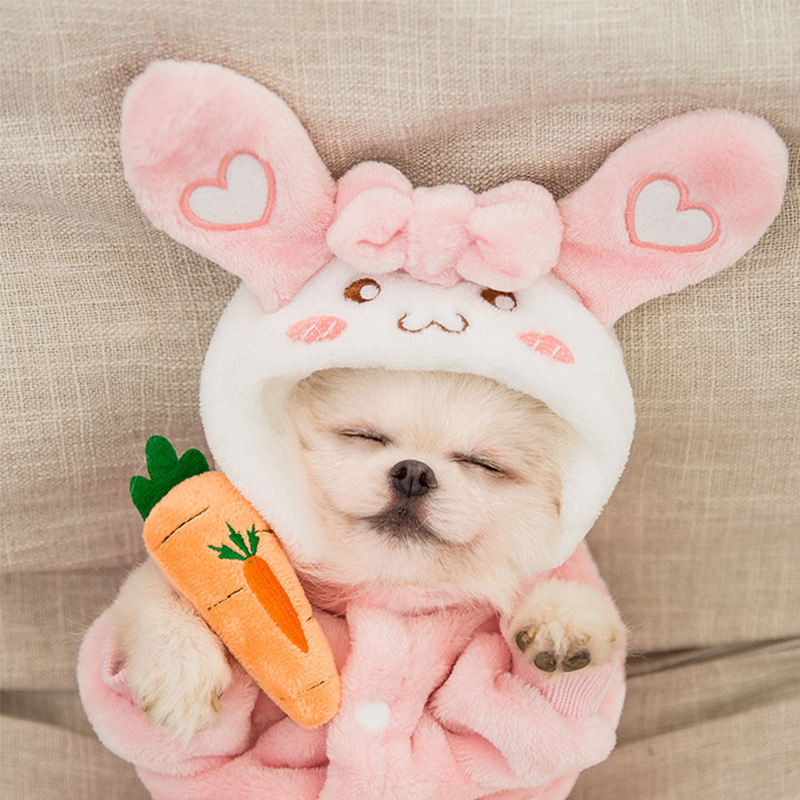 Pet Clothes Dog Clothes Hooded Sweater Cartoon Transformation Dress Winter Warm Plus Cashmere Christmas Halloween Costume