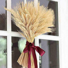100Pcs/lot Natural Dried Flower Wheat Ears Bouquet for Wedding Party Decoration DIY Craft Scrapbook Branch Props