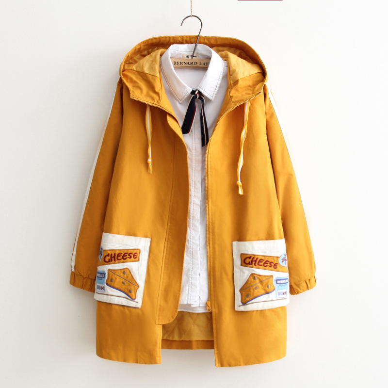 Japanese-style Mori Girl Line 2018 Winter Cotton-padded Clothes Thick Stick Pocket Embroidered Mid-length Hooded Cotton-padded C