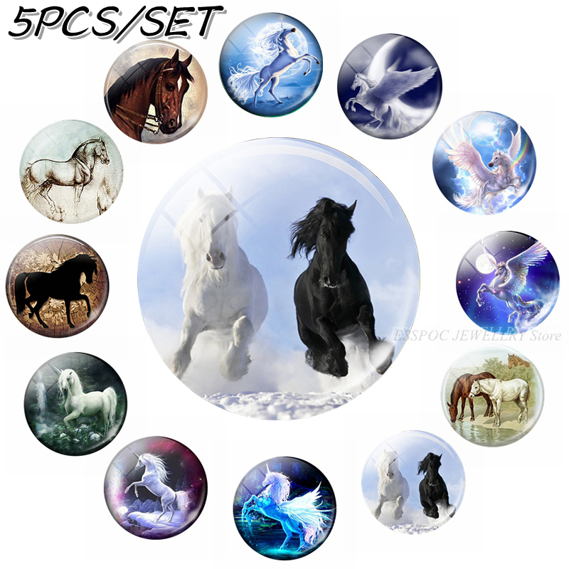 5PCS/SET Horse Photo 12/16/20/25/30mm Glass Cabochon Jewelry Animal Pegasus DIY Pendant Jewelry Findings & Components